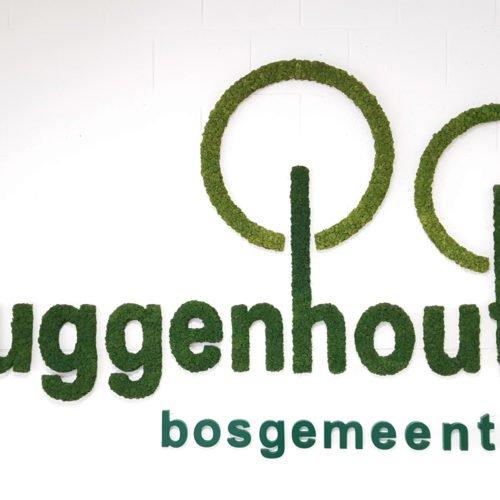 Gemeente Buggenhout Moslogo