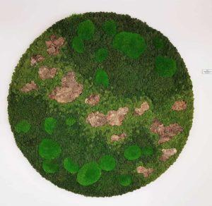 Moscirkel groene combi