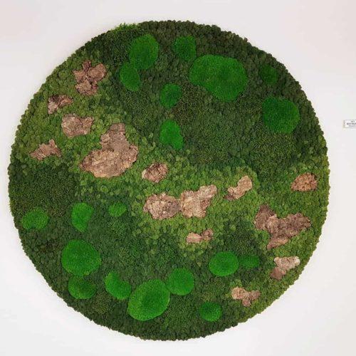 Mos Cirkel groene combi