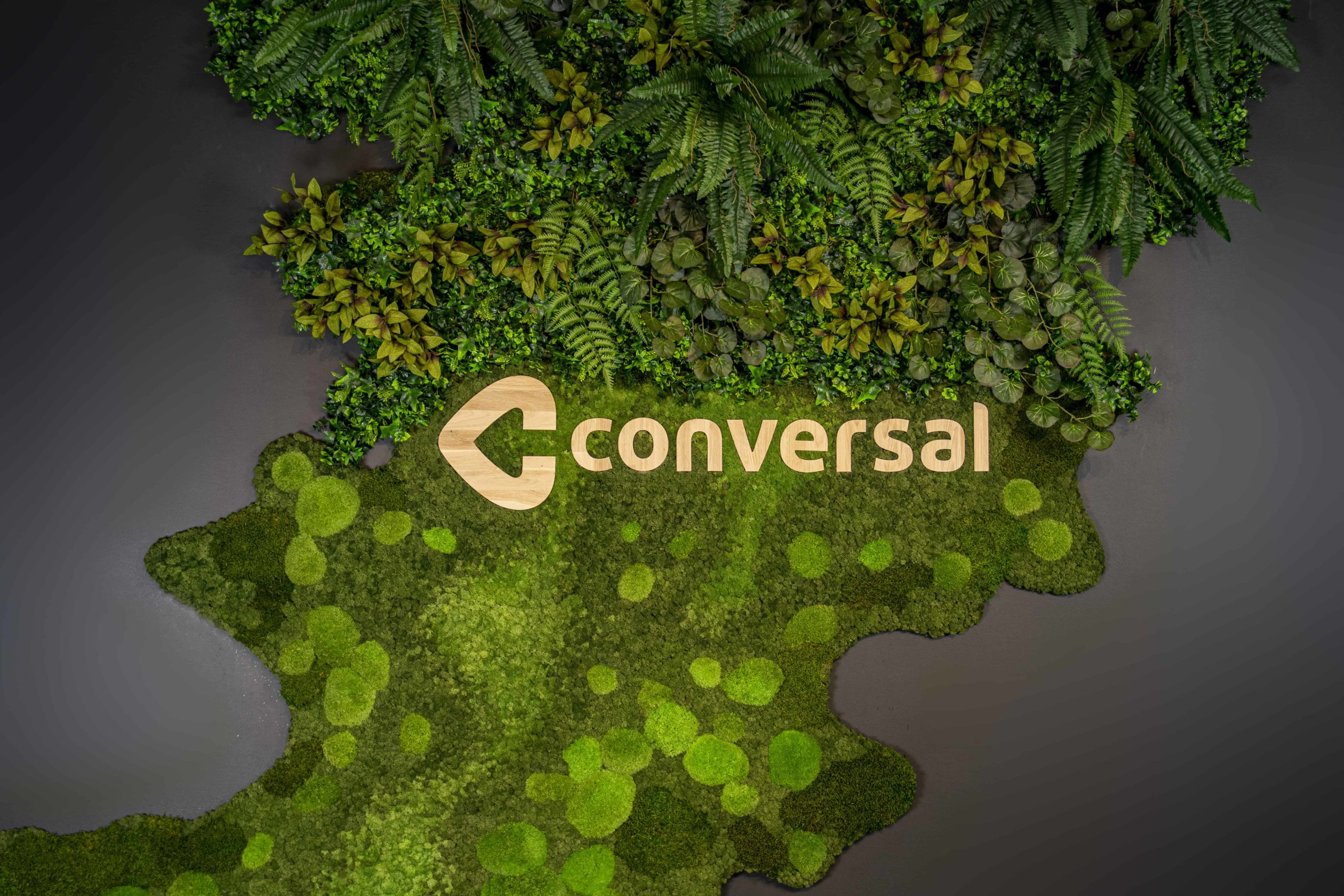 Conversal Mos en kunstplanten