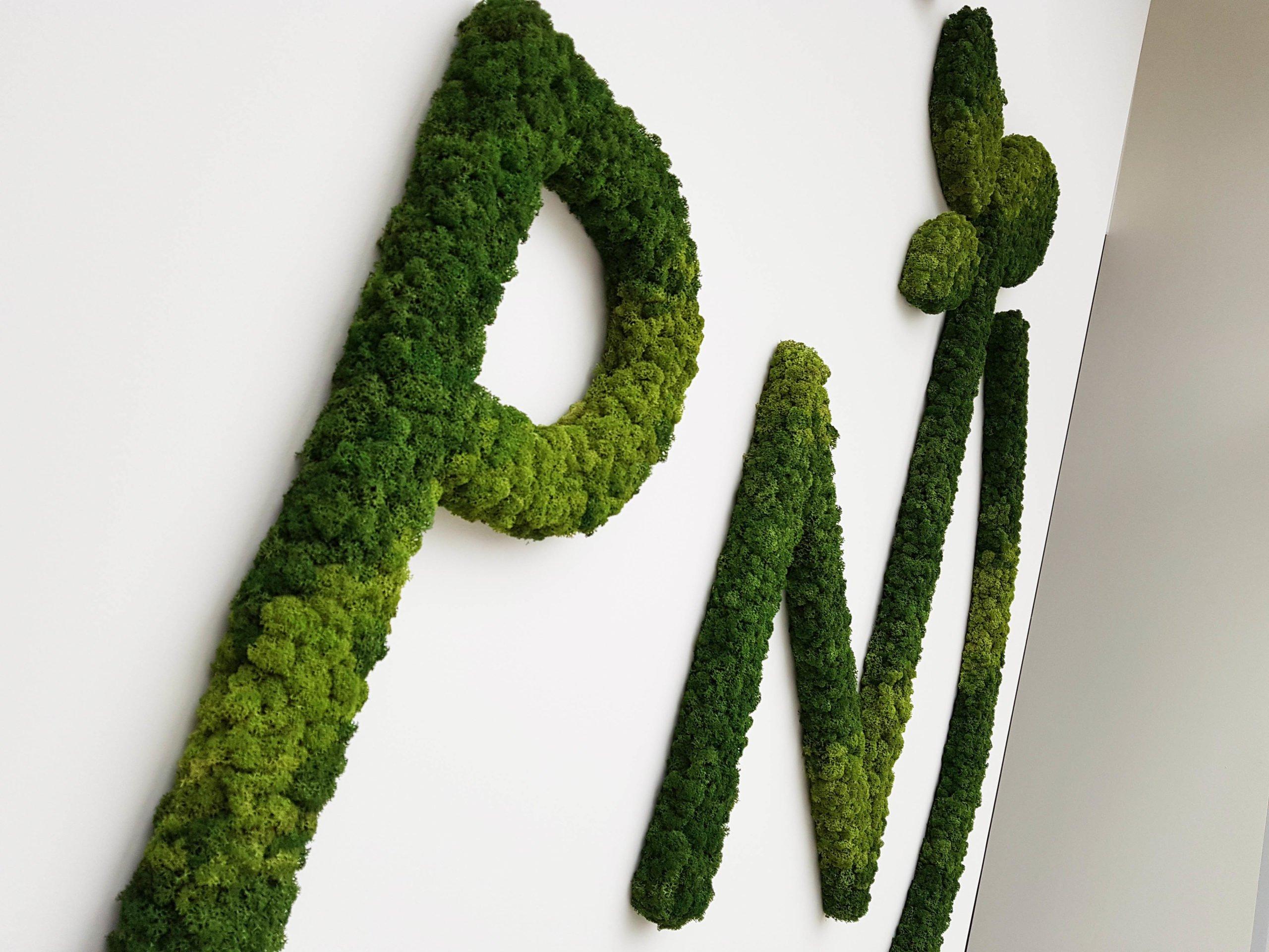Mos logo Paranord Close Up
